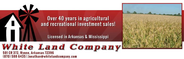 White Land Company